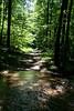 _MG_1879 tuscarora creek