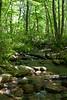 _MG_1880 tuscarora creek