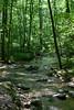 _MG_1912 tuscarora creek
