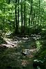 _MG_1954 tuscarora creek