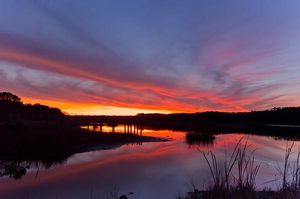 Murrell's Inlet Marsh