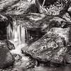 Tanasee Creek Detail