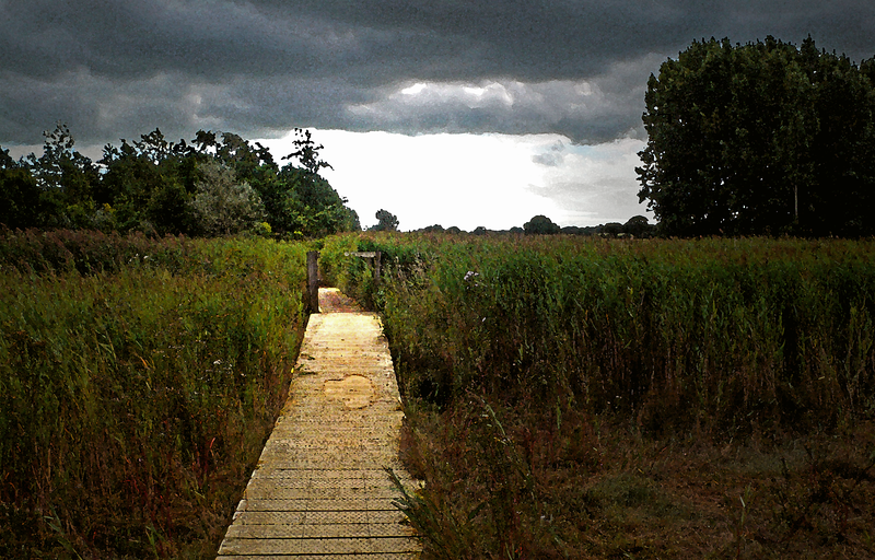 Footpath, Snape Maltings