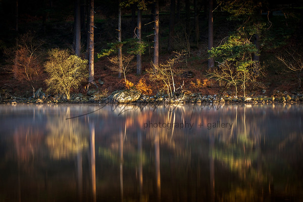 Wonderful colours in the morning sun at Glendalough