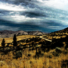 McNeil Canyon