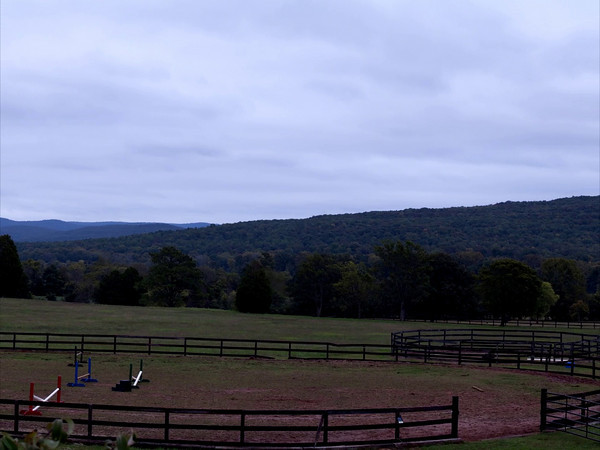 Landscape Pan Videos