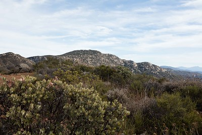 Rodriguez Mountain Peak, 3,886 feet elevation seen from the Rodriguez Trail above Hellhole Canyon