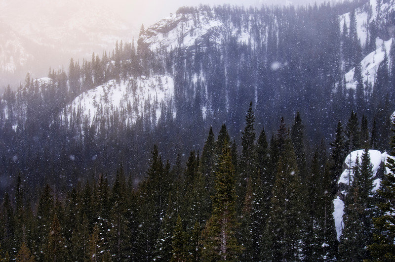 || The Hike to Dream Lake ||