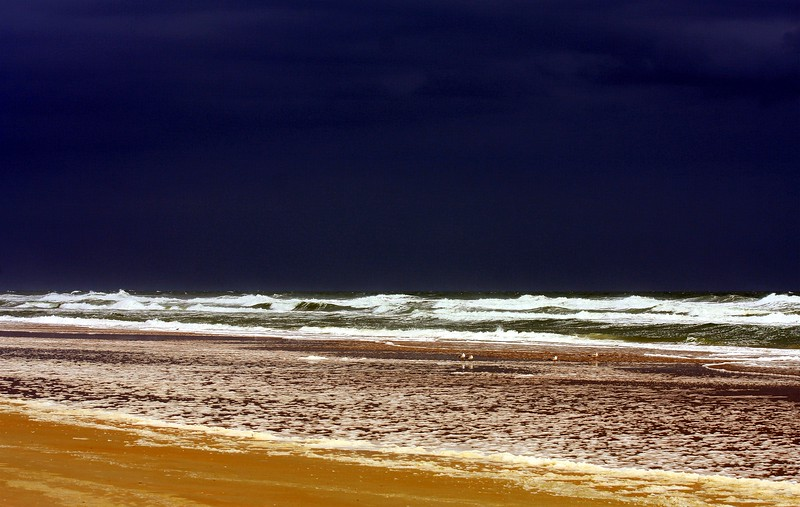 Stormy Day at the Beach