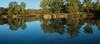 Willow Pond panorama with mallards - it's all about the mood