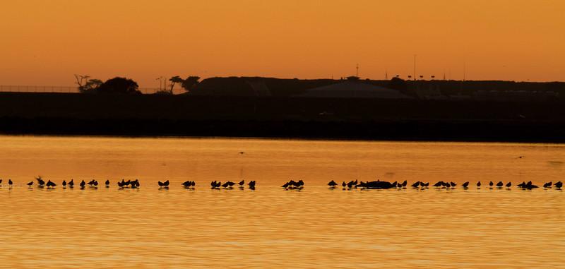 Salt Works Dusk &  Sunset Views 2-09-2011