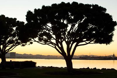 20120113-IMG_0853 Harbor Island park view of San Diego Bay, the Coronado bridge and the NE corner of Coronado peninsula.