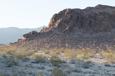 California Desert west of Needles