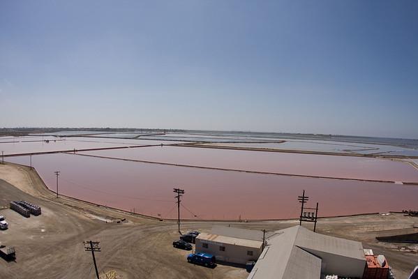 20090404 Salt Works Ponds