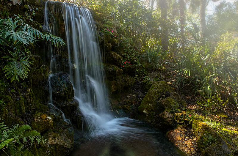 _DLS3396 foggy Rainbow Springs