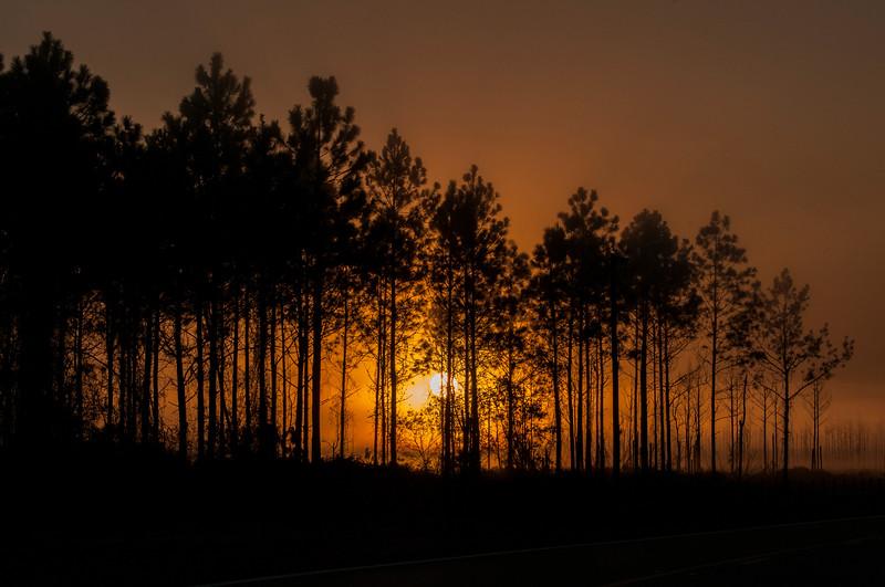 _DS36109 Maytown Sunrise
