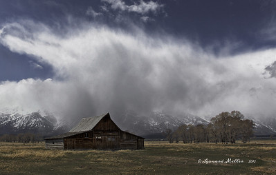 Mormon Barn Snow Flurries - Grand Teton NP