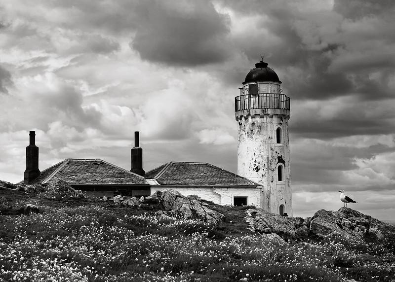 Isle of May - Lighthouse