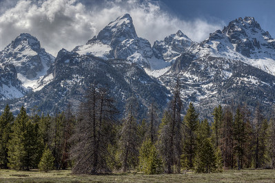 Grand Tetons - Wyoming