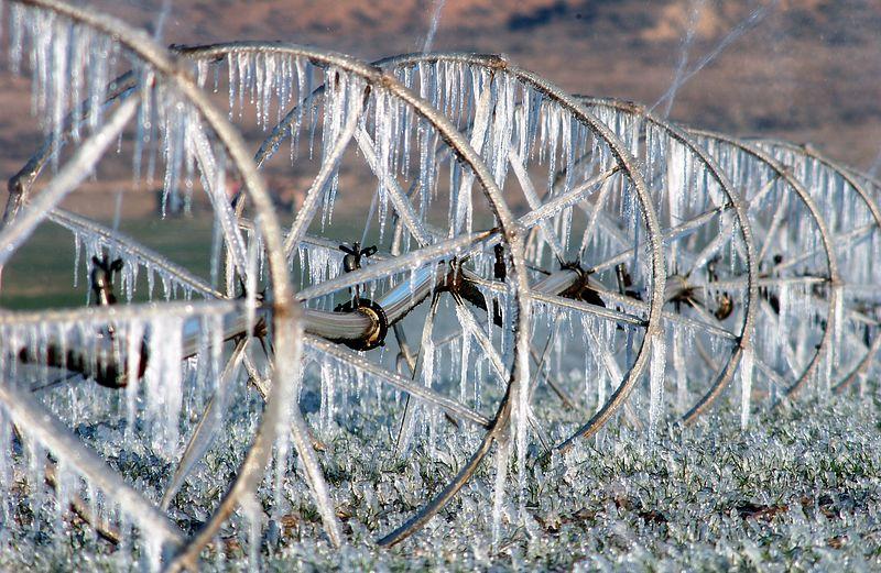 Watering the fields in Cuyama, CA (1-22-04)