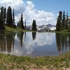 Top of Schofield Pass