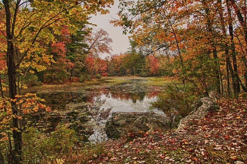 Runaround Pond Durham Maine