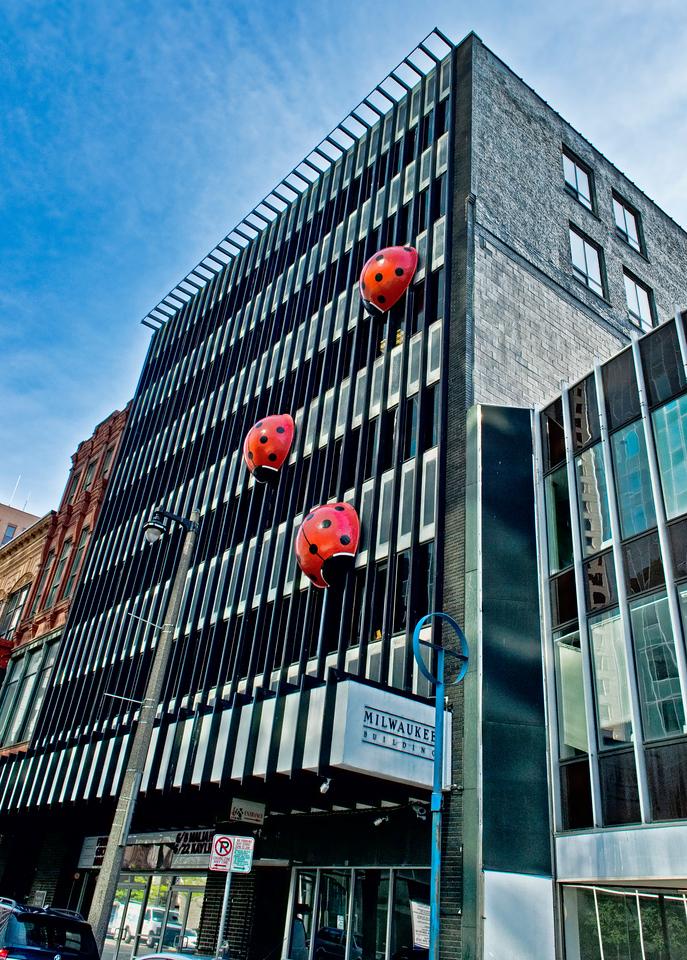 _DLS6927 Ladybug building
