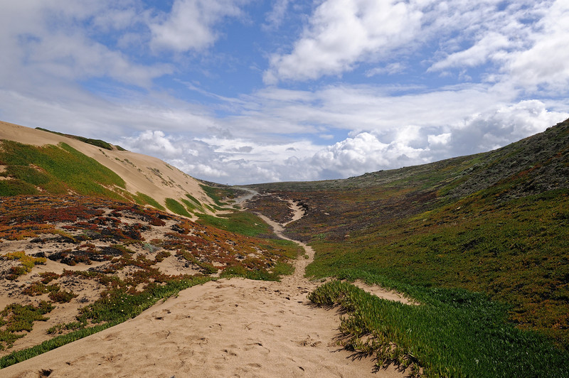 Monterey Peninsula, March