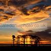 Berwickshire Sunrise