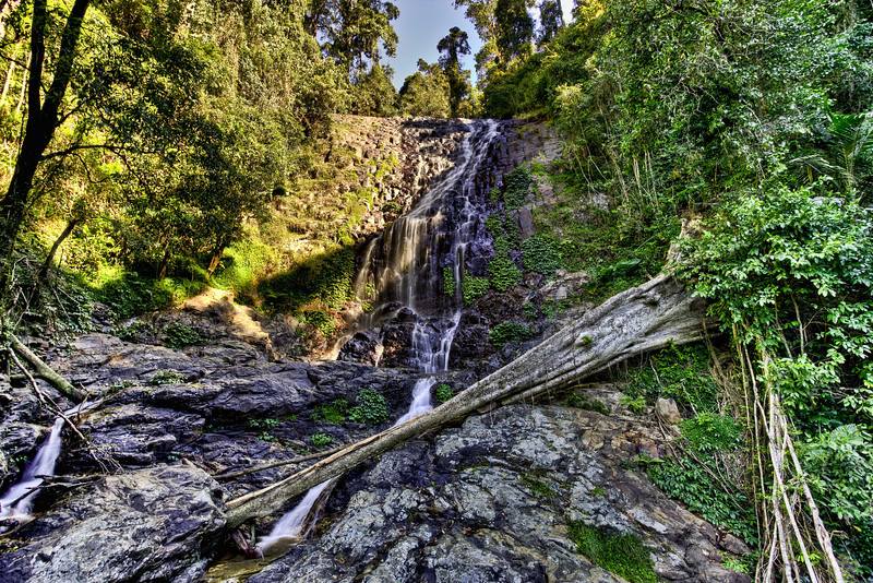 Tristania Falls<br />  Located in the Dorrigo Rainforest<br /> <br />  15th August 2013<br />  Canon EOS 6D+Canon EF 17-40mm f/4 L USM, ISO 100, f/8, 0.8ss, FL 17mm