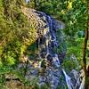 Tristania Falls<br /> Located in the Dorrigo Rainforest<br /> <br /> 15th August 2013<br />  Canon EOS 6D+Canon EF 17-40mm f/4 L USM, ISO 100, f/14, 0.5ss, FL 17mm