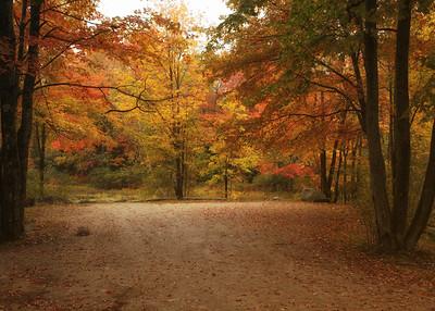 Runaround Pond, Durham Maine