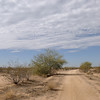 Arizona, November