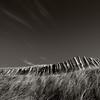 West Sands, Elie, Fife, Scotland