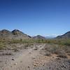 Phoenix Mountain Preserve, November