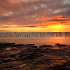 Farne Islands Sunrise