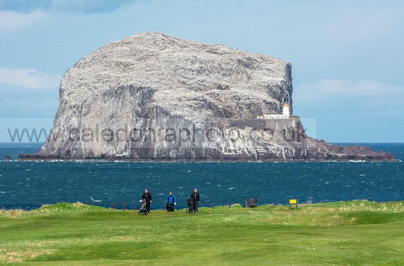 The Bass Rock