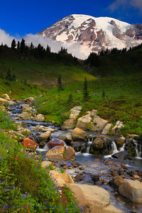 Edith Creek and Mt Rainier
