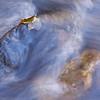 Sedona Oak Creek Canyon