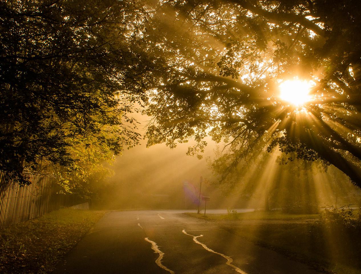 Sunbeam in East Lawrence, KS