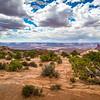Monsoon Season in the Desert 1