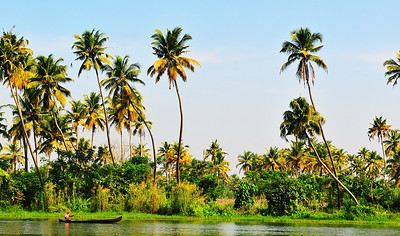 Kottayam Backwaters, Kerala, India