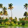 Kottayam Backwaters, Kerala, India