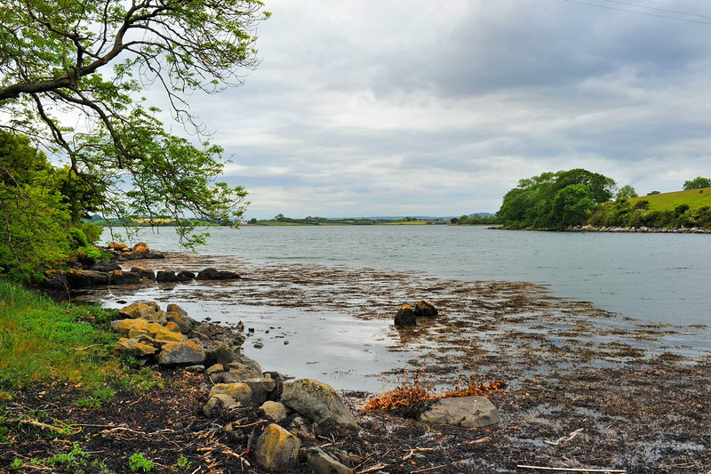 Strangford Lough from Mahee Island,<br /> County Down.<br /> Friday, 19th June 2015