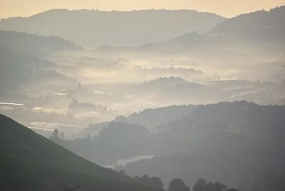 Sunrise at Gunong Brinchang, Cameron Highlands, Malaysia