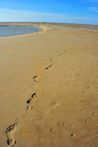 Footsteps In The Sand, Kelantan, Malaysia
