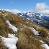 Hut Spur, Arthur's Pass NP, New Zealand