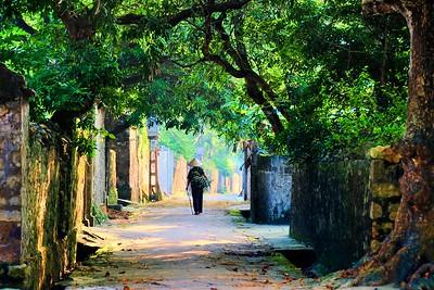 Going home, Ninh Binh, Vietnam