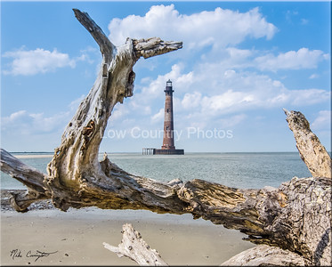 The Morris Island Light House in Folly Beach, SC as viewed through an old fallen tree on the beach. The Watermark will not show on printed images