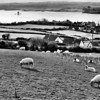 The Narrows, Portaferry, from Windmill Hill.